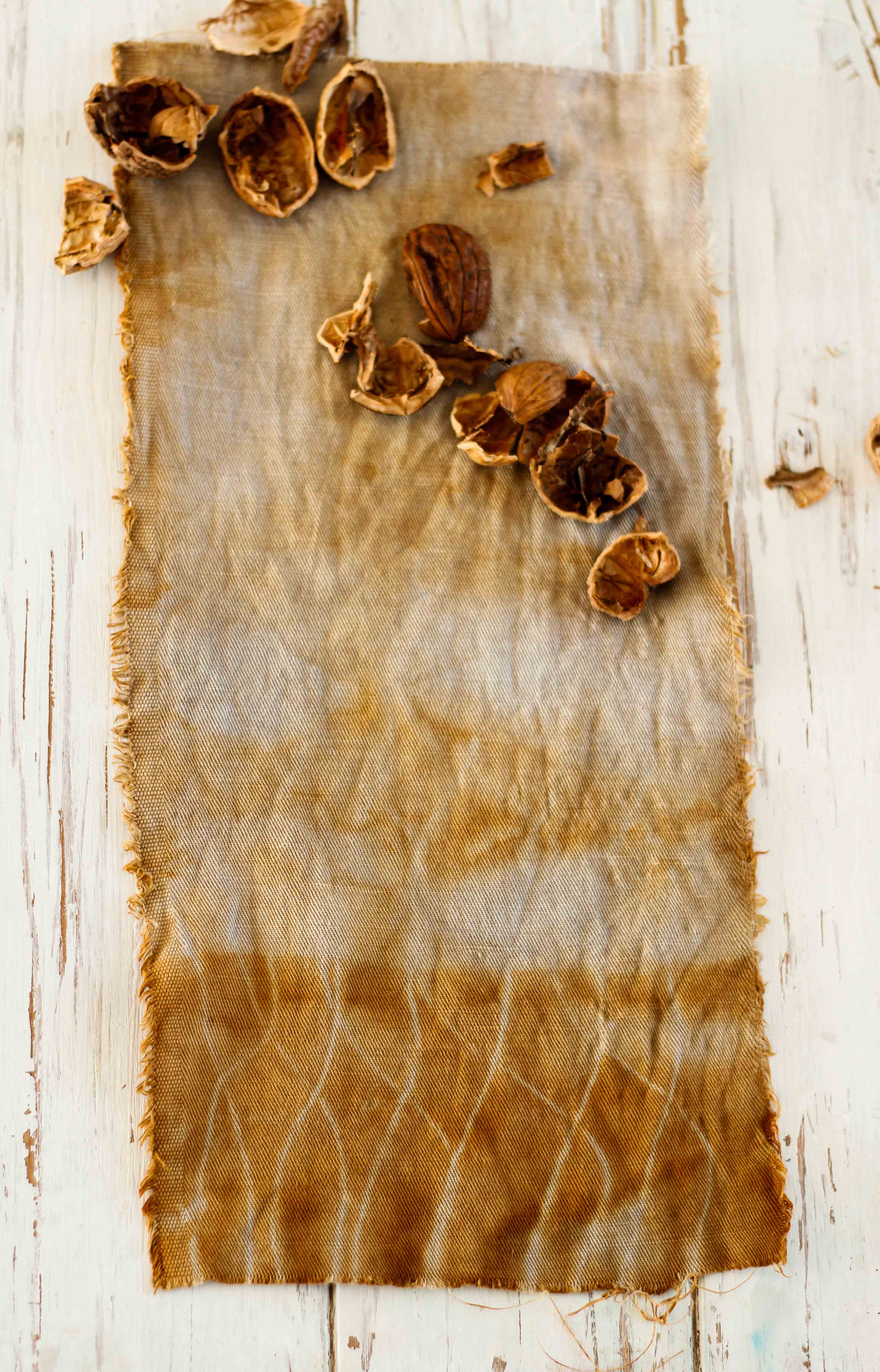 claudialeclercq-naturaldyes-tintesnaturales-walnutdyeing-tinte de nueces-teinture de noix-4